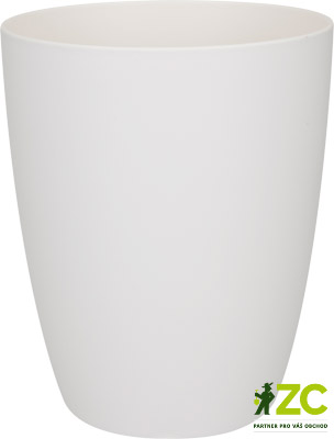 Brussels Orchid High 12,5 cm white