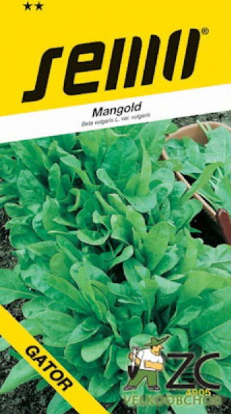 Mangold - Perpetual spinach (Gator) zelený 4g