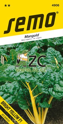 Mangold - Bright Yellow F1 zelený 3g